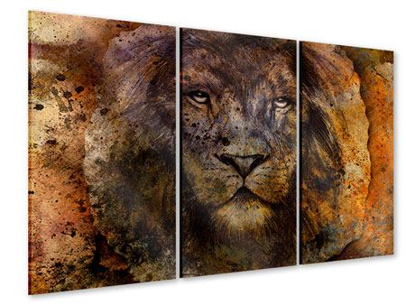 3 Piece Acrylic Print Portrait Of A Lion