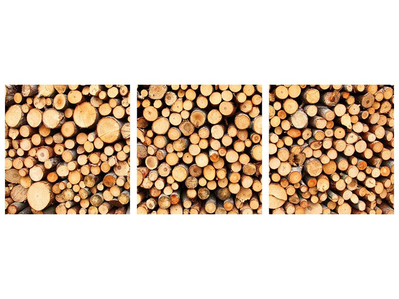 Panoramic 3 Piece Acrylic Print Logs