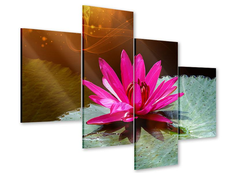 Modern 4 Piece Acrylic Print The Frog And The Lily Pad