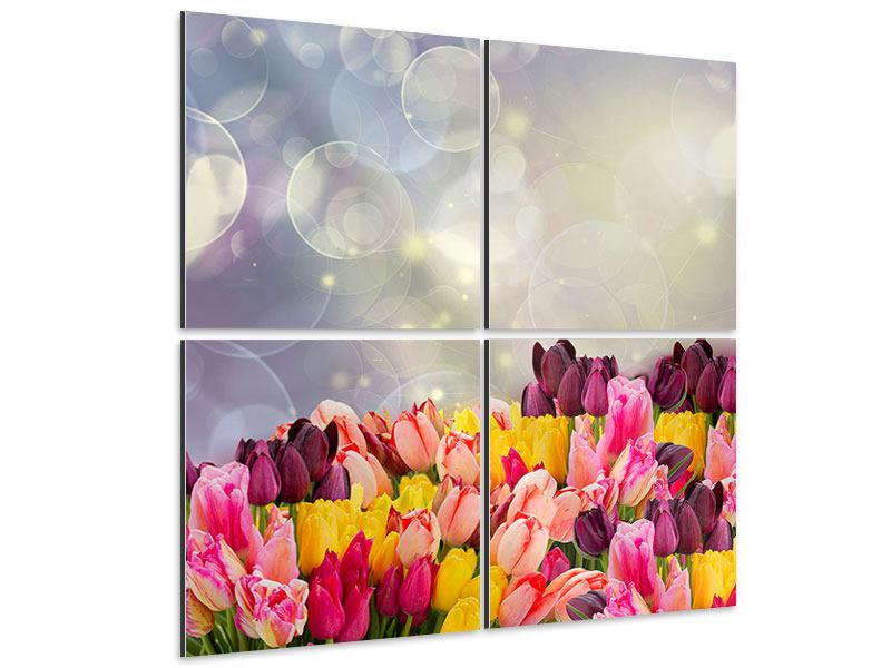 4 Piece Aluminium Print Colorful Tulip Bed In The Play Of Light