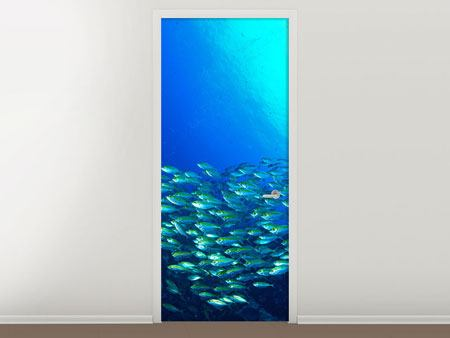 Door Mural Shoal Of Fish