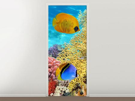 Door Mural Fish Wealth