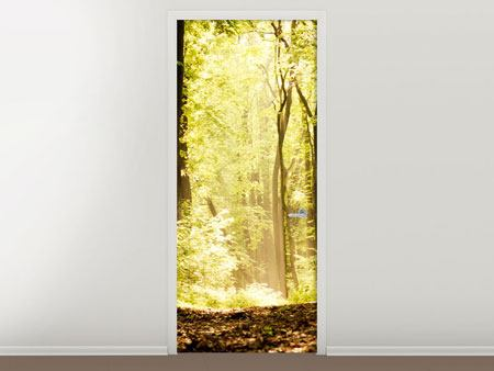 Door Mural Sunrise In The Forest