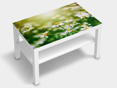 Furniture Foil The Daisy