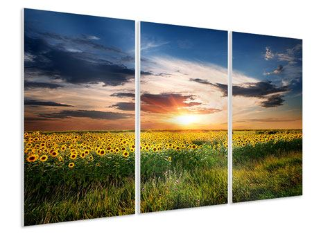 Tableau Forex en 3 parties Un champ de tournesols