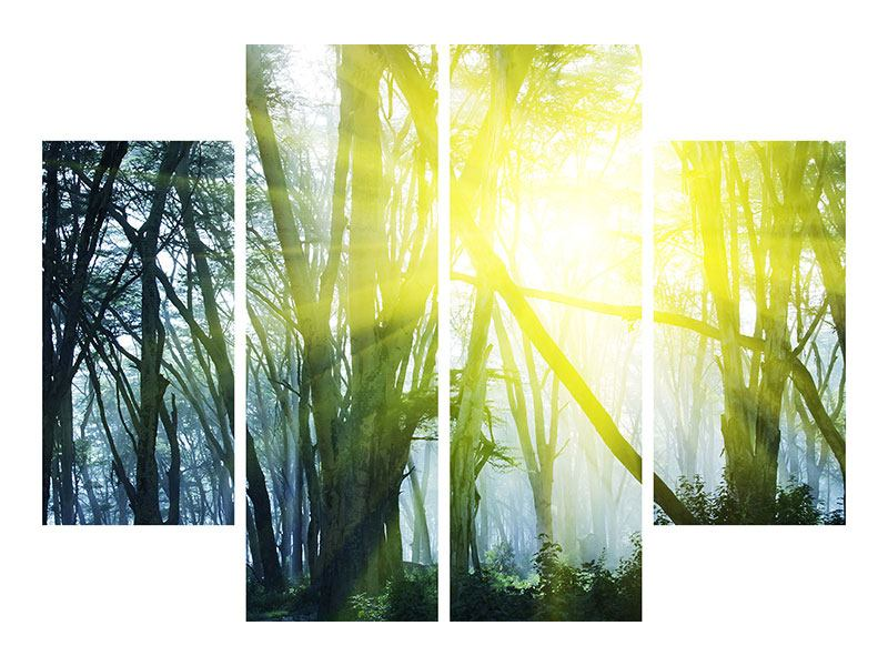 4 Piece Forex Print Sunbeams In The Forest