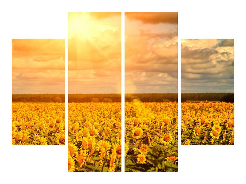 4 Piece Forex Print Golden Light Sunflower