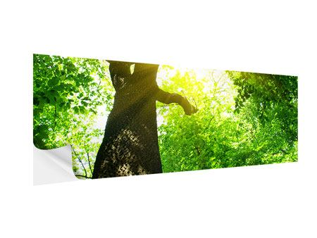 Panoramic Self-Adhesive Poster Tree
