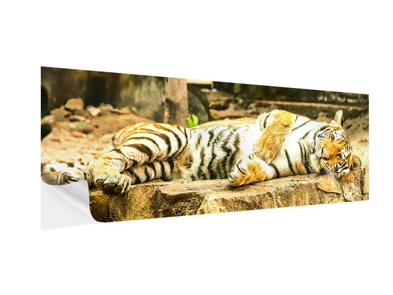 Panoramic Self-Adhesive Poster The Siberian Tiger
