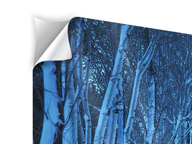 3 Piece Self-Adhesive Poster Winter Trees