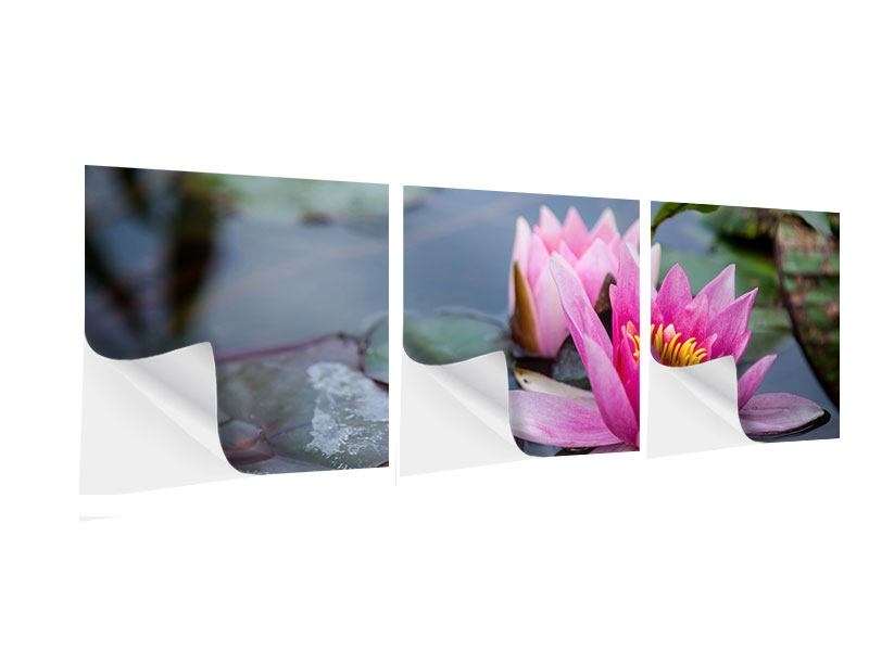 Panoramic 3 Piece Self-Adhesive Poster The Waterlilies Duo