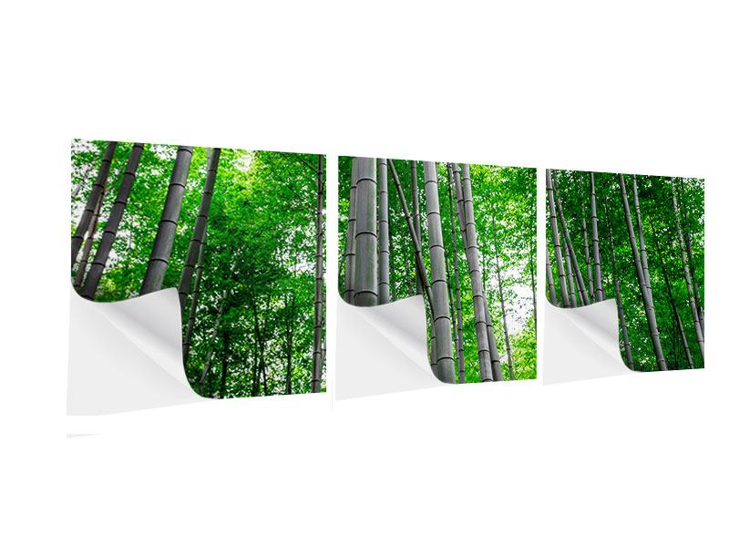 Panoramic 3 Piece Self-Adhesive Poster Bamboo Forest