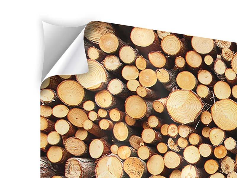Modern 5 Piece Self-Adhesive Poster Logs