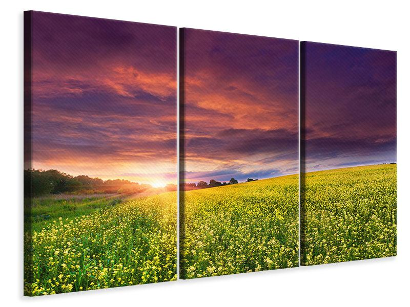 3 Piece Canvas Print Twilight