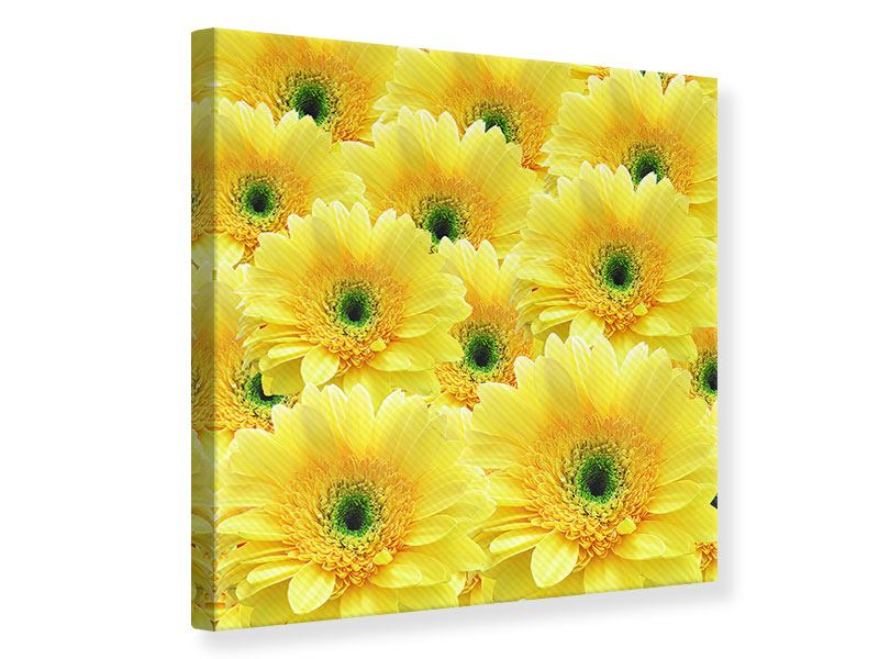 Canvas Print Flowerpower Flowers