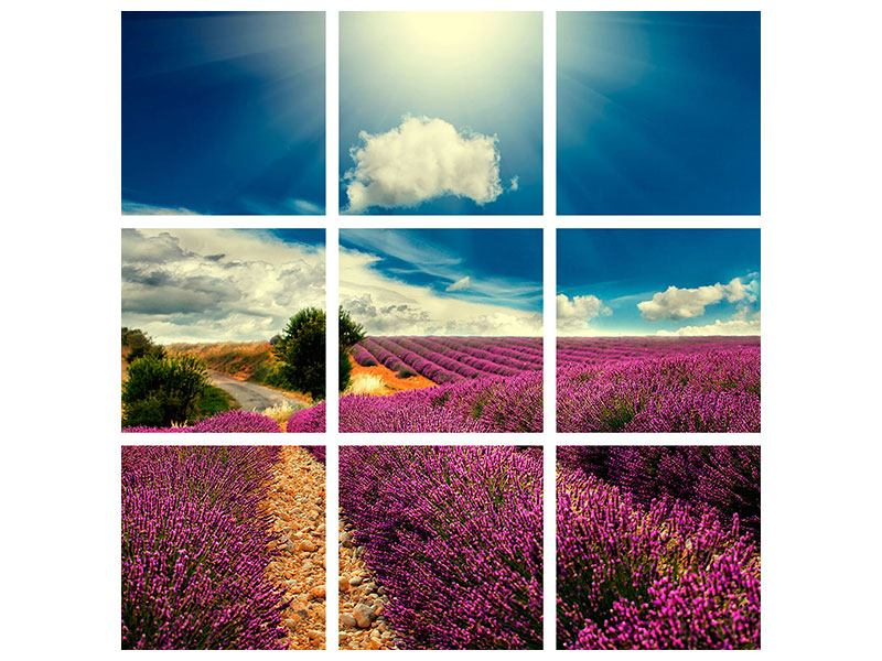 9 Piece Canvas Print The Lavender Valley